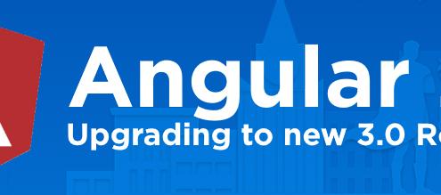 ng2_router30_upgrade